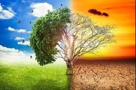 Riflessioni sulle quattro stagioni. L'impatto dei cambiamenti climatici